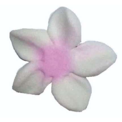 Icing Flower 2.5cm Frangp